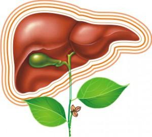 Витамин С - ключ к здоровью