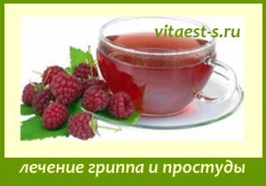 Лечение гриппа и простуды без лекарств